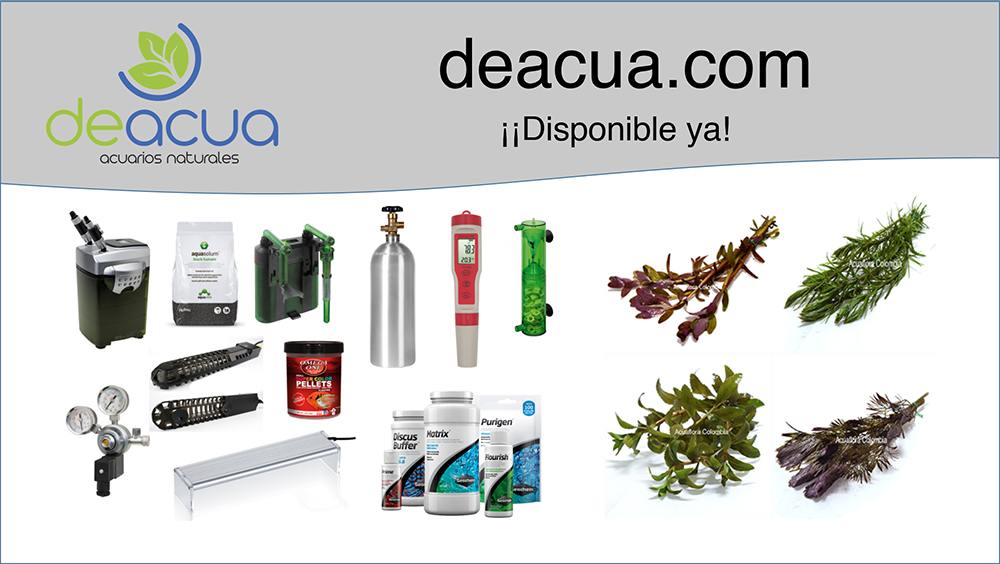 deacua disponible